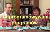 O odprogramowywaniu programów – Barbara Grząbkowiak-Wolski