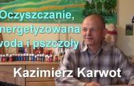 Kazimierz_Karwot