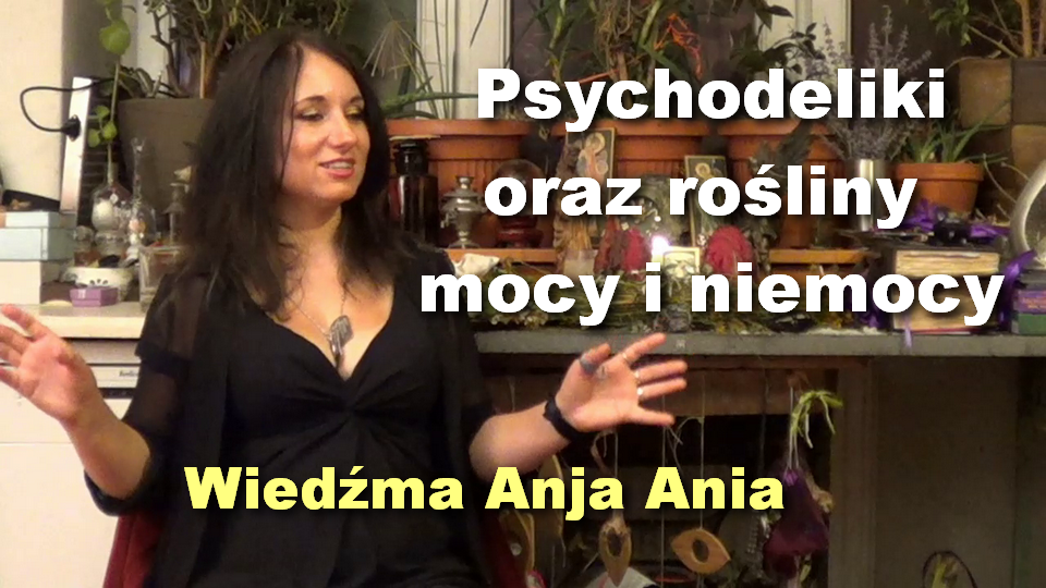 Ania-psychodeliki