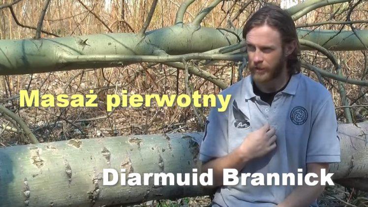 Masaż pierwotny – Diarmuid Brannick