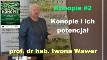 Konopie #2 – Konopie i ich potencjał – prof. dr hab. Iwona Wawer