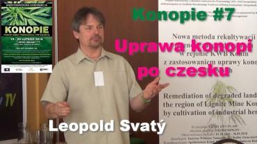 Konopie #7 – Uprawa konopi po czesku – Leopold Svatý