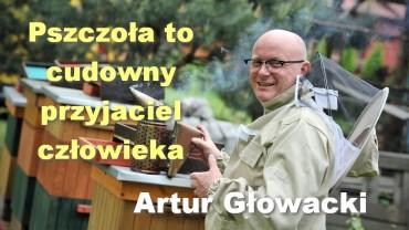 Pszczoła to cudowny przyjaciel człowieka – Artur Głowacki