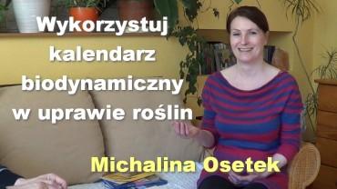 Wykorzystuj kalendarz biodynamiczny w uprawie roślin – Michalina Osetek
