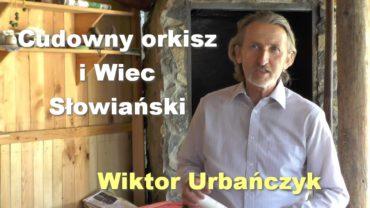 Cudowny orkisz i Wiec Słowiański – Wiktor Urbańczyk