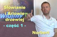 Słowianie i Ariowie drzewiej, część 1 – Norbert