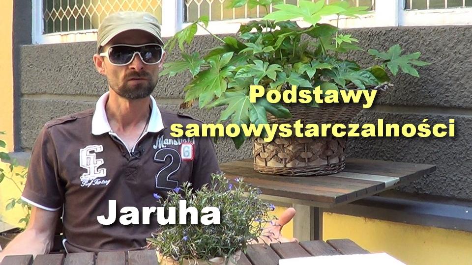 Jaruha