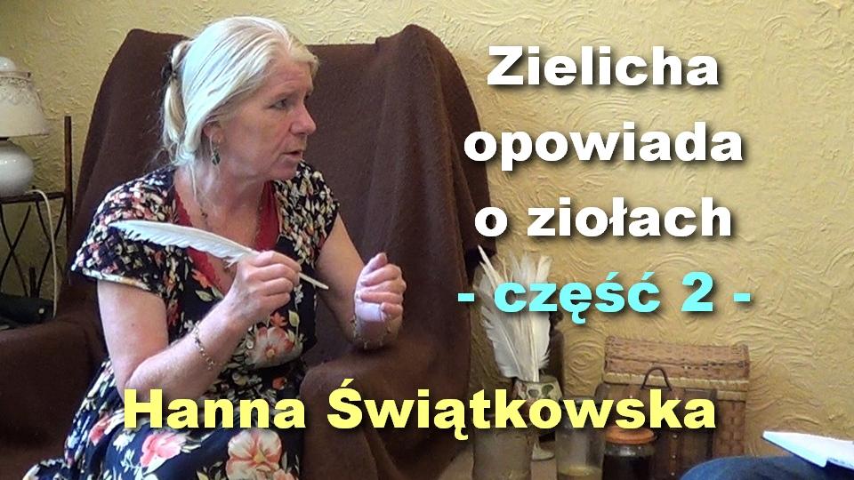 Zielicha 2