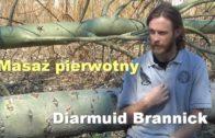 Diarmuid Brannick 5 PL