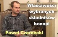 Pawel Czarnecki