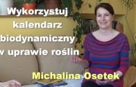 Michalina Osetek