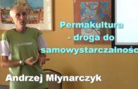 Jakie kanały YouTube usuwa i jak się przed tym bronić – Damian Bieńko