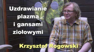 Krzysztof Rogowski