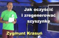Zygmunt Krasun