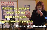 dr Diana Wojtkowiak
