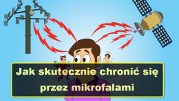 Jak skutecznie chronic sie przed mikrofalami
