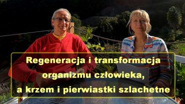 Idalia i Marek regeneracja