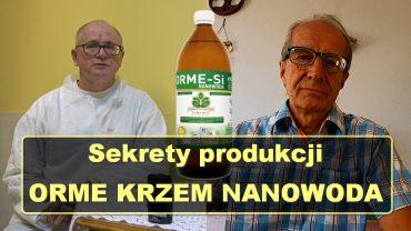 Piotr Mazur Orme krzem nanowoda