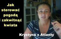 Antifa i inne wirusy – Krystyna z Atlanty [4]