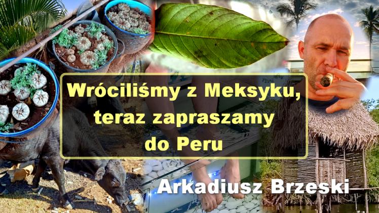 Wróciliśmy z Meksyku, teraz zapraszamy do Peru – Arkadiusz Brzeski